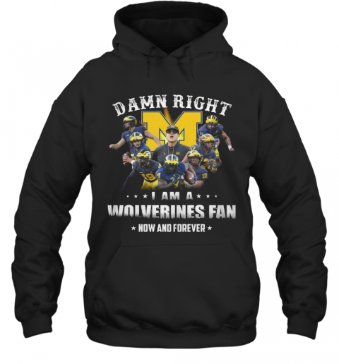 Damn Right I Am A Wolverines Fan Now And Forever T-Shirt Unisex Hoodie